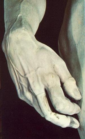 David (detail of veins)